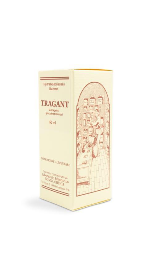 Der aus China stammende Tragant oder Astragalus gilt als große Pflanze innerhalb der TCM